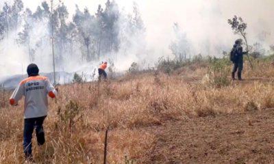 Tim gabungan TNI ,Polri bersama BPBD Bondowoso berusaha padamkan titik api (foto dul Memontum.com)