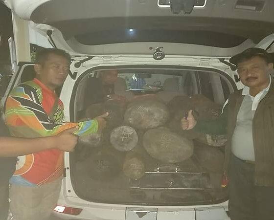 Polmob KPH Bondowoso Amankan Mobil Siaga Desa, Diduga Sebagai Sarana Illegal Logging Sono Keling