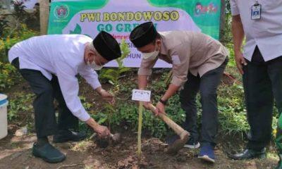 Bupati Salwa Arifin Bersama PWI Bondowoso Tanam Seribu Pohon